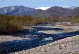 札内川における取り組み  帯広開発建設部